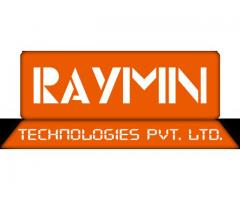 Best SEO Company in India, RayMn Tech