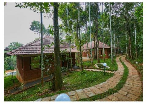 Raindrops Resorts Wayanad