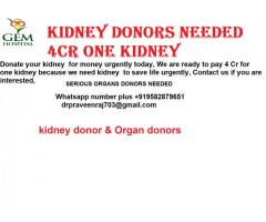 sell one kidney for 4crore