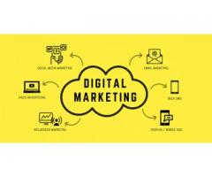 Digital Marketing Training in Kochi