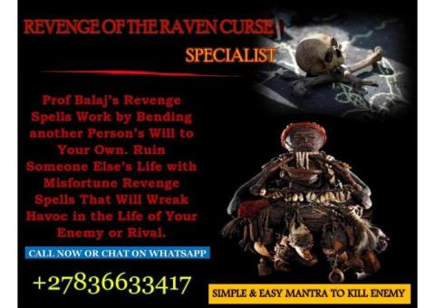 Revenge Spell Caster: How to Cast a Revenge Spell on My Ex | Mantra to Kill Your Enemy +27836633417